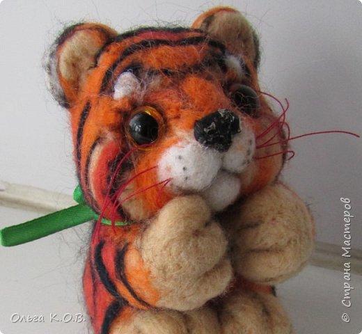Тигрики на будущий НГ фото 4