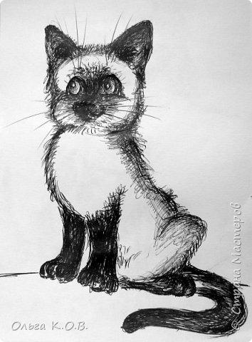 Рисунки ручкой ( пока жду очередь к врачу)