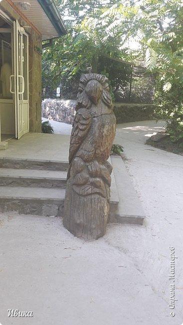 Добрый день, дорогие соседи! У меня ещё небольшая порция фото из Черкасского зоопарка (Украина). 1 часть о зоопарке тут https://stranamasterov.ru/node/1170753  2 часть тут https://stranamasterov.ru/node/1170809  это если кому будет интересно. А эта часть совсем маленькая. Большей частью и не о зверушках. Как я уже писала раньше, по всей территории зоопарка стоят вот такие деревянные скульптуры. Органично так  всё смотрится и видится! Эта скульптурка стоит на краю дорожки.  фото 7