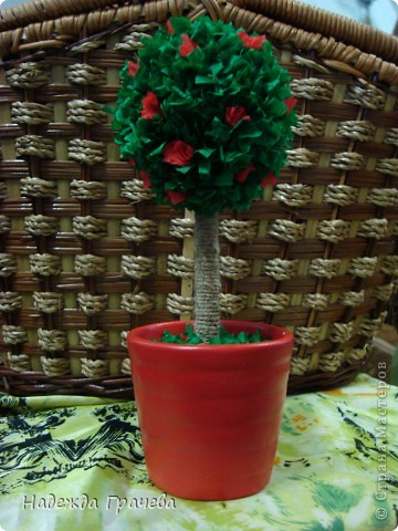 Мое первое дерево фото 2