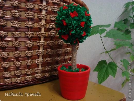Мое первое дерево фото 3