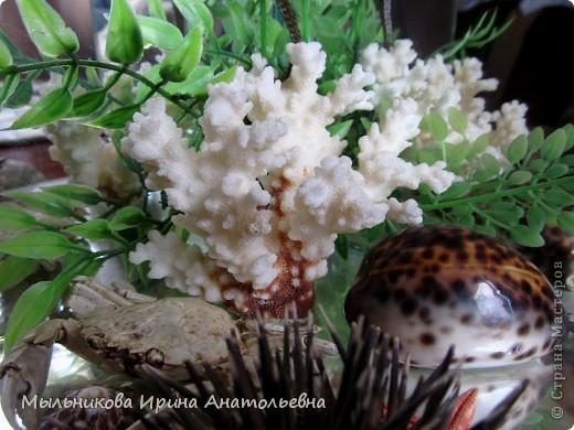 24 июня - День флориста фото 1