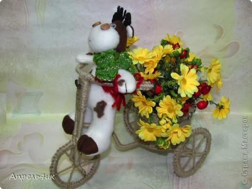При выборе обязательного задания долго не раздумывала, конечно же, День рождения велосипеда! Давно заглядывалась на забавные велосипедики-кашпо для цветов. Интернет-магазины предлагают широкий ассортимент кашпо в форме велосипедов (на один и два горшка) из природного материала, которые прекрасно дополнят любой интерьер и придадут комнатным цветам и растениям новый вид, но гораздо приятнее сделать кашпо для цветов своими руками и поставить в него любимый цветок.  фото 5
