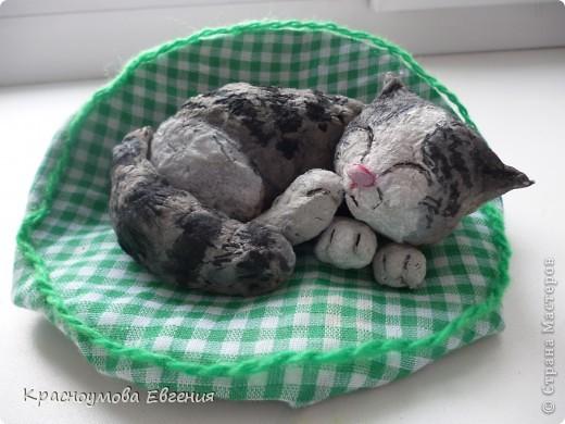 """11 сентября - день домашних любимцев и день моего рождения))) В симпатичной кроватке лежит котенок Дуня) Дуня - это мой кот, но он уже взрослый. Я решила слепить его, когда он был маленький и тем самым напомнить ему детство. Вообще """"Дуня"""" - имя женское))) Но была такая история: """"Когда Дуня был маленький, он был сильно похож на девочку))) Папа посмотрел - девочка. Вот мы и дали ему такое имя) Но примерно через месяц я заметила, что у котенка грубая шерсть (как у всех котов). А потом выяснилось, что Дуня - мальчик) Но к имени мы уже привыкли и поэтому не стали переименовывать. Между прочем, такие же ошибки были у нас еще с 2 кошками))) фото 2"""