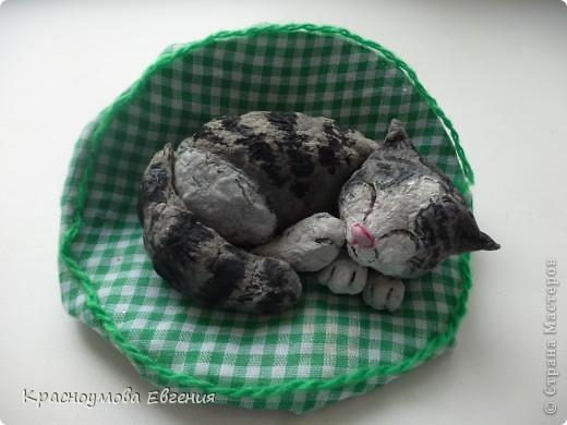 """11 сентября - день домашних любимцев и день моего рождения))) В симпатичной кроватке лежит котенок Дуня) Дуня - это мой кот, но он уже взрослый. Я решила слепить его, когда он был маленький и тем самым напомнить ему детство. Вообще """"Дуня"""" - имя женское))) Но была такая история: """"Когда Дуня был маленький, он был сильно похож на девочку))) Папа посмотрел - девочка. Вот мы и дали ему такое имя) Но примерно через месяц я заметила, что у котенка грубая шерсть (как у всех котов). А потом выяснилось, что Дуня - мальчик) Но к имени мы уже привыкли и поэтому не стали переименовывать. Между прочем, такие же ошибки были у нас еще с 2 кошками))) фото 1"""