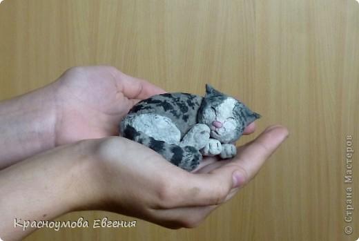 """11 сентября - день домашних любимцев и день моего рождения))) В симпатичной кроватке лежит котенок Дуня) Дуня - это мой кот, но он уже взрослый. Я решила слепить его, когда он был маленький и тем самым напомнить ему детство. Вообще """"Дуня"""" - имя женское))) Но была такая история: """"Когда Дуня был маленький, он был сильно похож на девочку))) Папа посмотрел - девочка. Вот мы и дали ему такое имя) Но примерно через месяц я заметила, что у котенка грубая шерсть (как у всех котов). А потом выяснилось, что Дуня - мальчик) Но к имени мы уже привыкли и поэтому не стали переименовывать. Между прочем, такие же ошибки были у нас еще с 2 кошками))) фото 7"""