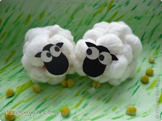 Вот такие замечательные барашки, а точнее барашка и овечка получились у меня из ваты))) фото 8