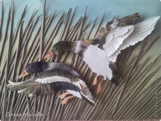 День улетающих птиц.  фото 1