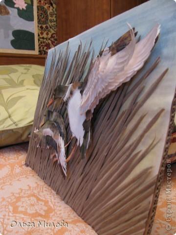 День улетающих птиц.  фото 8