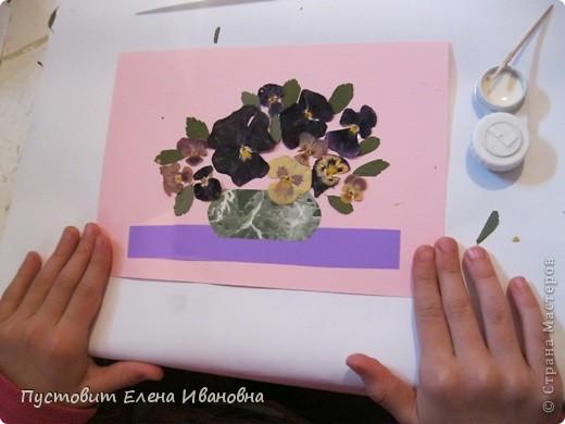 Вот такой букетик анютиных глазок появился у нас в кружковой на одном из последних занятий.Работа выполнена в древней японской технике «ошибана»-в этой технике используются растения,засушенные под прессом. Научное название этого цветка по-латыни «виола триколор » — фиалка трехцветная. Принадлежит она к семейству фиалковых. Это двулетнее травянистое растение с одиночными цветками на длинных стеблях. Цветки ее действительно трех цветов: верхние их лепестки окрашены в фиолетовый или темно-синий цвета, нижние — в белый или желтый, а центральная часть оранжево-желтая. Этим она отличается от своей ближайшей родственницы — фиалки душистой. В на- роде существуют и другие ее названия: анютины глазки, братики, брат-и-сестра, сороканедужник, полуцвет, трехцветка, топорчики. Цветет фиалка трехцветная с апреля до осени. . Дикое растение со скромными желто-лиловыми цветками превратилось в крупные, восхитительные нежно-бархатистые анютины глазки. Первая попытка сделать этот цветок садовым была предпринята в XVI веке в садах принца Вильгельма Гессен-Кассельского. Очень любил фиалки Гёте. Каждую весну он сам их сеял в окрестностях Веймара. До сих пор эти цветы называют там «цветами Гёте», а немецкие садовники вывели сорта «Доктор Фауст» (почти черные).  фото 8