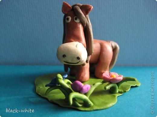 Этот день я выбрала не случайно, это день моего рождения, а еще я родилась в год лошади. Лошадей я очень люблю, это очень умные и красивые животные.  На коне Я катался на коне летней ночью при луне Мы скакали по лугам по лесам и по горам... А под утро на рассвете обогнали даже ветер! Я катался на коне - только жалко, что во сне. (Тим Собакин)  фото 1