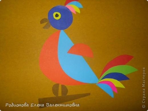 Я сделал попугая из геометрических фигур. Чтобы моя аппликация была более выразительная, я использовал полукруги и полуовалы. фото 1