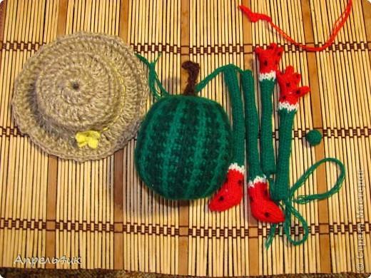 Арбуз известен людям с древности. Свою родословную ведет он от диких растений тропической Африки. В пустыне Намиб и полупустыне Калахари до сих пор можно встретить заросли дикого арбуза. В Древнем Египте он был известен еще 4000 лет назад. Ценили арбуз в Древнем Китае, где у него был даже свой праздник «День арбуза». В Россию этот плод был завезен в 8-10 веках из Индии во времена оживленной торговли с Киевской Русью. Первоначально арбуз прижился в Поволжье, а к 17 веку широко распространился и выращивался даже в центральных районах, как парниковая культура. Слово «арбуз» происходит от иранского «харбюза», что означает дыня или «огромный огурец». И в этом нет ничего удивительного, т.к. и арбуз, и дыня, и огурец относятся к одному семейству Тыквенных.   фото 3