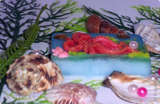 День осьминога фото 10