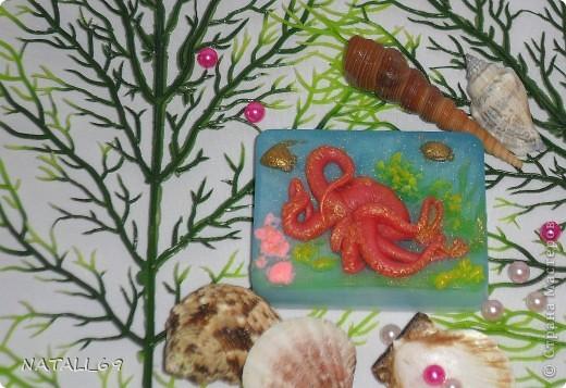 День осьминога фото 11