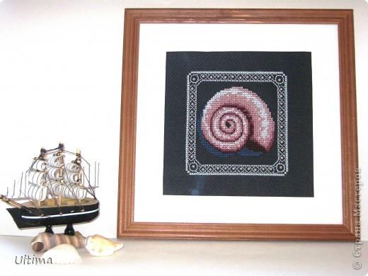 """16 июля день даров моря. Мини-картина """"Ракушка"""" вышита крестиком нитками мулине и бисером на канве. фото 1"""