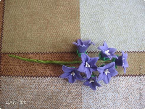 День фиолетово- лилового настроения фото 8