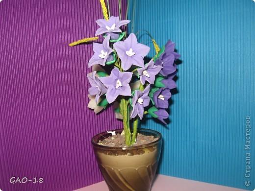 День фиолетово- лилового настроения фото 9