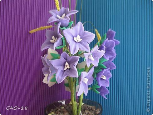 День фиолетово- лилового настроения фото 1