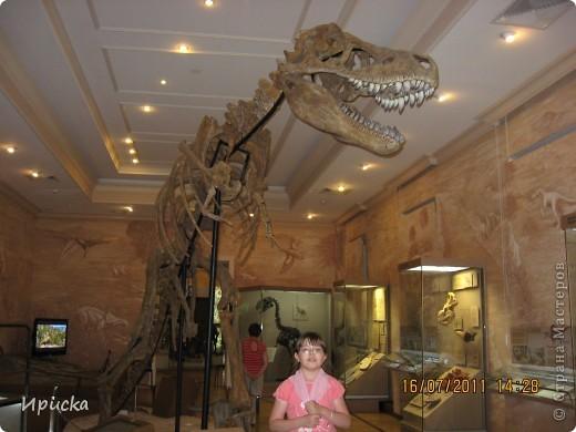 (А. Монт)   У мамы-динозаврихи в семействе прибавленье –  Малютки-динозаврики достойны умиленья!  Еще вчера динозаврята лежали в яйцах, как цыплята,  И скучно было там, хоть плачь, яйцо всего... с футбольный мяч!  Но вот скорлупки развалились, из них степенно появились:  Лобастик, Бука, Радостёнок, а этот шустрый – Пострелёнок.  Гуськом за мамой, след во след, отправились глядеть на свет,  Пришли... Вот динозавров стадо, здесь мама всем представить рада  Детишек: «Бука, Радостёнок, Лобастик…где же Пострелёнок?  О горе, горе, неужели напали хищники и съели  Сыночка, крошечку, ребёнка, несчастного динозаврёнка?»  И мчится стадо, мчится мать пропавшего искать, спасать.  От топота земля дрожит и лес поваленный трещит...  Вдруг видят, вот он – Пострелёнок, хвостом играет, как котёнок:  Кружится, силится поймать, но хвост не может свой догнать.  От пережитого волненья у динозавров тут колени  Ослабли вмиг и подломились – гиганты... в обморок свалились!...  ..Уж много миллионов лет на свете динозавров нет,  На всей большой планете! Никто не знает – почему?  Наверное, не потому, что их пугали дети!  Но может так, на всякий случай, родителей не будем мучить –  Теряться, драться, удирать... а будем их оберегать?  фото 5