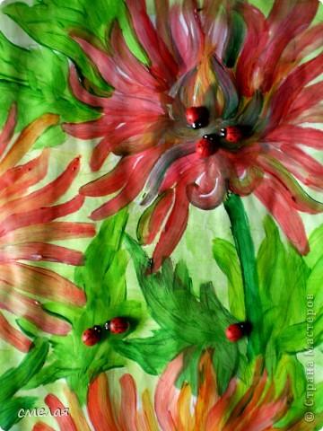 День хризантем.Очень люблю эти цветы, поэтому и был выбран этот праздник. фото 5