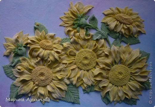 Подсолнухи - один из моих любимых цветов.  Солнечные, теплые и такие величественные - очень добрые цветы. фото 5