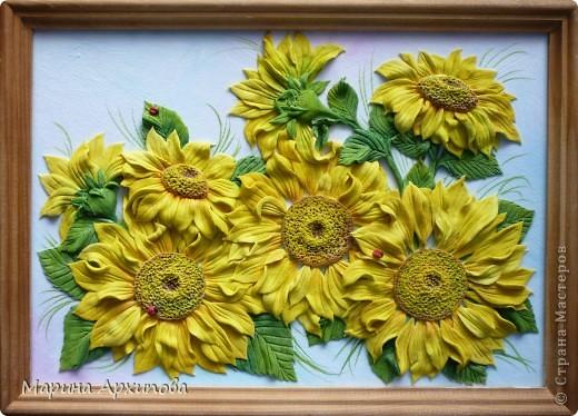 Подсолнухи - один из моих любимых цветов.  Солнечные, теплые и такие величественные - очень добрые цветы. фото 6