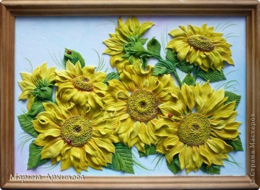 Подсолнухи - один из моих любимых цветов.  Солнечные, теплые и такие величественные - очень добрые цветы. фото 1