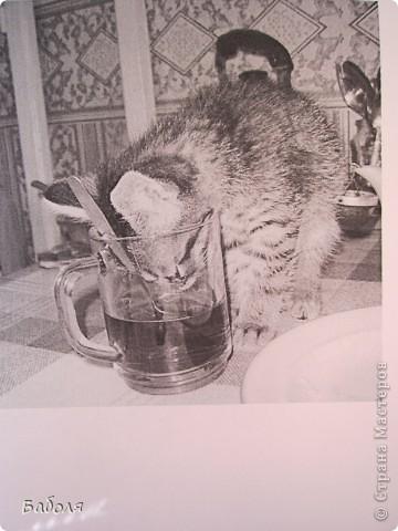 День был тяжелый, я знаю  Ты отпусти и забудь обо всем,  Вечер пусть будет спокойным и ясным, Чтобы ты просто растаяла в нем. Я пожелать хочу вечера теплого, С чашкою чая и пледа в ногах, Вечера тихого, вечера доброго, Книжка раскрыта и кот на руках. фото 10