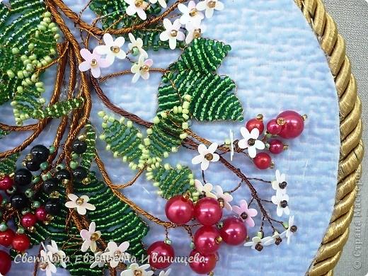 Смородина - род растений семейства Крыжовниковые. Различают  черную и красную смородину.   Черная смородина является многолетним кустарником, продолжительность жизни может составлять от 10 до 15 лет. Она произрастает в диком виде в лесной и лесостепной зонах средней полосы европейской части России. Чаще всего  растет по берегам водоемов, в подлеске влажных лиственных, смешанных и хвойных лесов, по окраинам болот, на сырых лесных и пойменных лугах. Черную смородину широко культивируют на приусадебных участках и в садах.       В славянской мифологии существует такая легенда, которая повествует о том, что Смородина – огненная и кипучая река, отделяющая мир живых от мира мертвых, она является преградой, которую предстоит преодолеть душе человека по дороге в иной мир. Почему река названа смородиной – вкусной и полезной ягодой, можно только догадываться. В шутку можно предположить, что это растение действительно является сильной преградой для того, чтобы перейти в мир иной, так как чёрная смородина – залог здоровья и долголетия.      О том, что чёрная смородина – залог здоровья наша страна знала испокон веков, так, например, имеются данные, что её разводили в киевских монастырях в XI веке, что для монастырской простой кухни являлось большим разнообразием. Данное растению название так же исконно русское. Смородина происходит от древнерусского языка, слово «смородить» означало источать запах, что подтверждает приятный аромат, исходящий от листьев растения.  фото 8