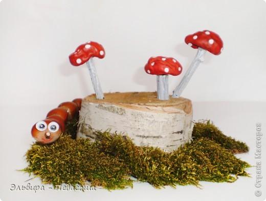 В честь Дня работников леса приглашаю вас, уважаемые жители Страны Мастеров, на мою мини-выставку фотографий грибов. У самодельных грибов ножки - это веточки старого дерева, а шляпки - это каштаны, которые мне привезла ещё прошлой осенью коллега, за что ей огромное Спасибо!  фото 2