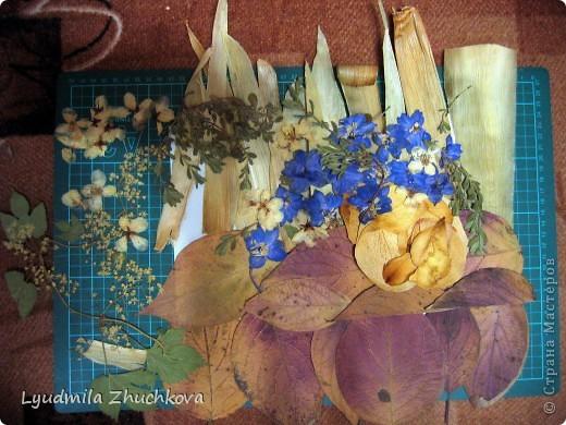 """Одно из направлений, по которму я работаю с детьми в своём объединении, это создание картин из плоскозасушенного природного материала-ошибана. """"Букет дельфиниума"""" выполнен из листьев от початков кукурузы, лепестков розы, осенних листьев камчатской гречихи, разных травинок, цветов жасмина, незабудок и, конечно, дельфиниума. фото 9"""