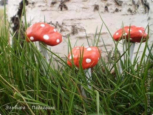 В честь Дня работников леса приглашаю вас, уважаемые жители Страны Мастеров, на мою мини-выставку фотографий грибов. У самодельных грибов ножки - это веточки старого дерева, а шляпки - это каштаны, которые мне привезла ещё прошлой осенью коллега, за что ей огромное Спасибо!  фото 3