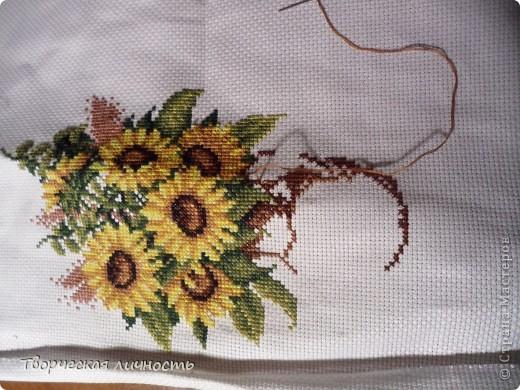В геральдике подсолнечник — символ плодородия, единства, солнечного света и процветания, а также символ мира.  Подсолнух самый добрый, солнечный цветок в мире. фото 3