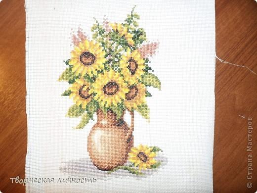 В геральдике подсолнечник — символ плодородия, единства, солнечного света и процветания, а также символ мира.  Подсолнух самый добрый, солнечный цветок в мире. фото 1