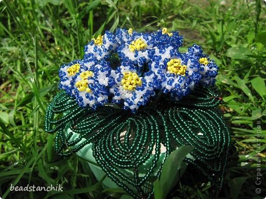 Моя работа посвящена Сенполии - чудесному комнатному растению! Любимый цветок, выполнен в технике бисероплетения.  фото 1