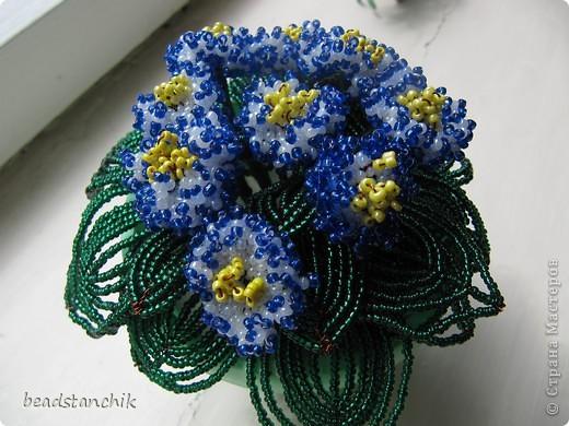 Моя работа посвящена Сенполии - чудесному комнатному растению! Любимый цветок, выполнен в технике бисероплетения.  фото 5