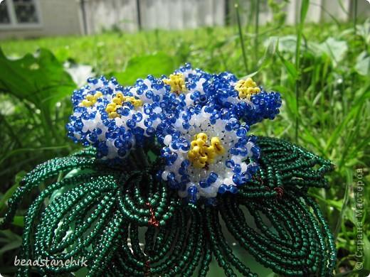 Моя работа посвящена Сенполии - чудесному комнатному растению! Любимый цветок, выполнен в технике бисероплетения.  фото 6