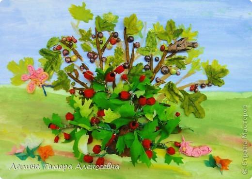 Смородина вкусная и полезная ягода - это мне поведали ребята. А еще каждый назвал свой любимый куст смородины, в основном садовые виды: красная, черная, желтая, Богдан назвал зелёную. Но все забыли про лесную смородину, которая бывает разноцветная и очень вкусная. Встречаются сорта дикой (лесной) смородины на которой созревают ягоды разного цвета:темно-желто-оранжевого, красного, красно-коричневого, коричнево-черного. Куст смотрится очень нарядным. Такая смородина растет у меня на даче и , самое интересное, ягоды мы едим  до осени.   фото 1