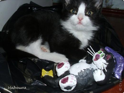 11 сентября-День домашнего любимца. У меня очень долго не было домашнего питомца, а совсем недавно я стала хозяйкой замечательного котеночка.  Старалась слепить максимально похожую уменьшенную копию.  фото 3