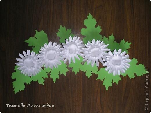 Это мои хризантемки.  фото 1