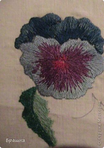 Фиа́лка трёхцве́тная, или Аню́тины гла́зки (лат. Víola trícolor) — травянистое однолетнее или двулетнее (изредка многолетнее) растение семейства Фиалковые, распространённое в Европе и умеренных областях Азии. В садоводстве анютиными глазками часто называют также гибридную Фиалку Виттрока (Viola × wittrockiana Gams ex Hegi), имеющую более крупные и более яркоокрашенные цветки. фото 2