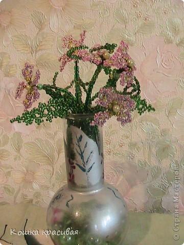 Флори́ст (или фитодиза́йнер) — специалист в области декорирования интерьеров с помощью цветочных композиций (флористики). Местом работы флориста зачастую является цветочный салон. Также флористы занимаются фитодизайном и озеленением помещений. фото 5