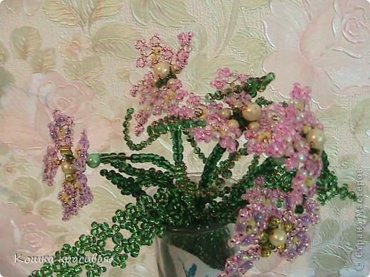 Флори́ст (или фитодиза́йнер) — специалист в области декорирования интерьеров с помощью цветочных композиций (флористики). Местом работы флориста зачастую является цветочный салон. Также флористы занимаются фитодизайном и озеленением помещений. фото 6