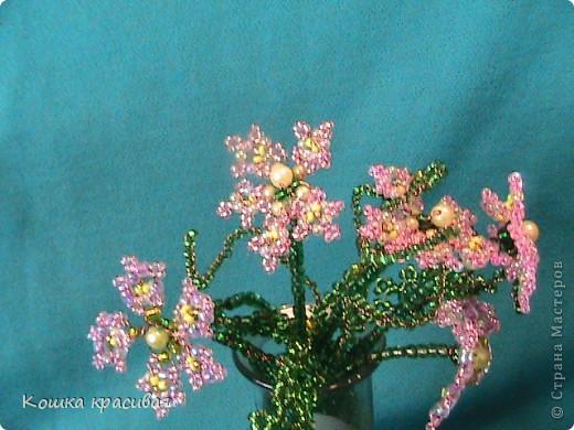 Флори́ст (или фитодиза́йнер) — специалист в области декорирования интерьеров с помощью цветочных композиций (флористики). Местом работы флориста зачастую является цветочный салон. Также флористы занимаются фитодизайном и озеленением помещений. фото 1