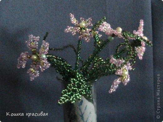 Флори́ст (или фитодиза́йнер) — специалист в области декорирования интерьеров с помощью цветочных композиций (флористики). Местом работы флориста зачастую является цветочный салон. Также флористы занимаются фитодизайном и озеленением помещений. фото 7