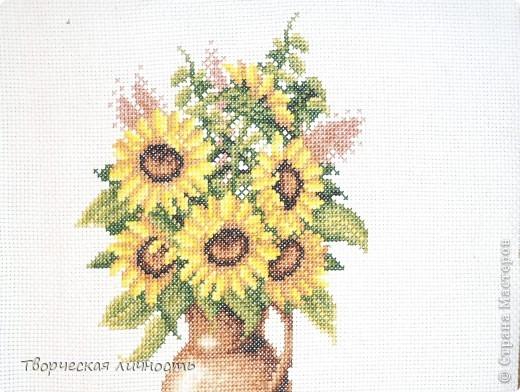 В геральдике подсолнечник — символ плодородия, единства, солнечного света и процветания, а также символ мира. Подсолнух самый добрый, солнечный цветок в мире.