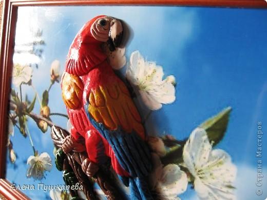 В детстве у меня было два волнистых попугайчика Кеша и Маша. Как-то раз мы с братом взяли поиграть Кешу, и по неосторожности, он у нас улетел. Как сейчас помню, как мы его ловили по всем дворам, на помощь нам тогда пришли родители, соседи, так как он ловко перелетал с одного двора на другой. Это был для нас большой урок. В своей конкурсной работе я изобразила попугая на воле, а попугай Ара выбран не случайно, так как именно о таком попугае я мечтала, большой, красивый, яркий. фото 2