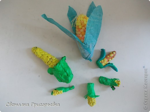 А вы знали, что кукуруза - царица полей? Это факт известный, а сорта знаете? Много их и разные все. Знакомьтесь! А вдруг пригодится... фото 1