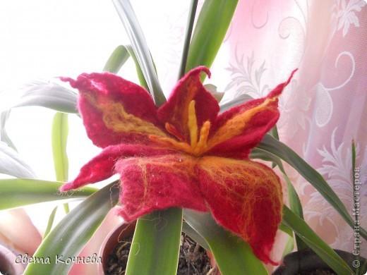 Вот такой красивый цветок Диана смастерила в нашем школьной студии. Теперь на него могут полюбоваться все! фото 1